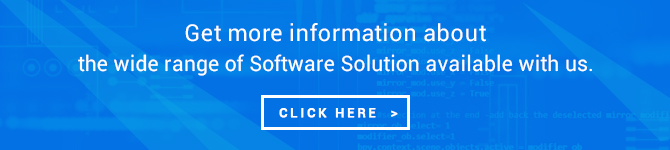 software solution development